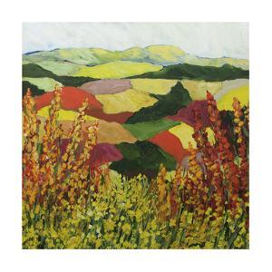 Red Blend by Allan Friedlander
