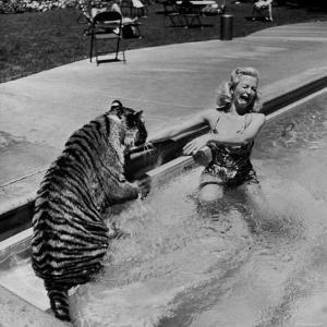 Actress Marilyn Maxwell Playing with a Tiger in a Pool by Allan Grant