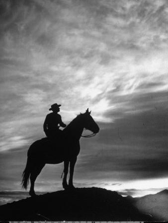 Silhouettes of Cowboy Mounted on Horse