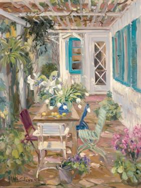 Summer Garden by Allayn Stevens