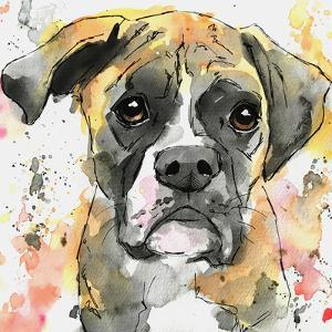 Brindle Boxer by Allison Gray