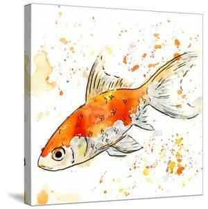 Cat the Goldfish by Allison Gray