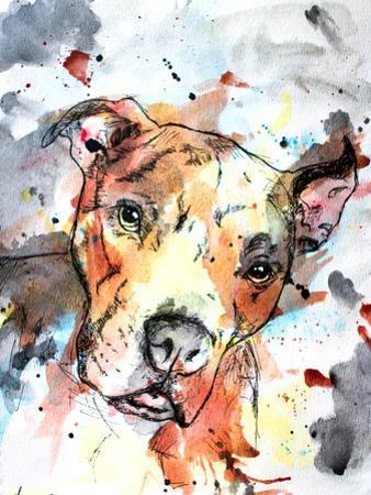 Colorful Dog by Allison Gray