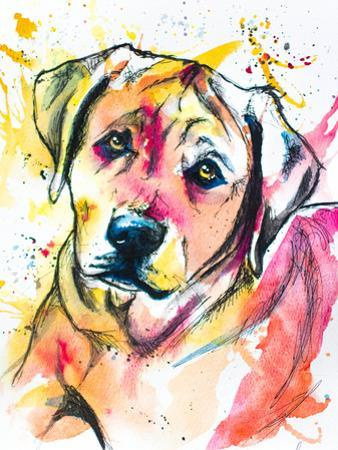 Colorful Lab Mix by Allison Gray
