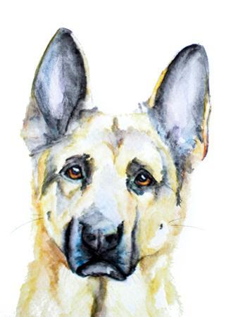 German Shepherd by Allison Gray
