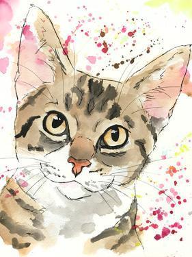 Golden Tabby Kitten by Allison Gray