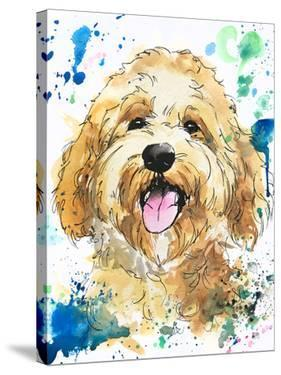Murray the Cockapoo by Allison Gray