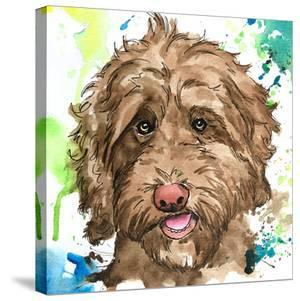 Olive the Labradoodle by Allison Gray