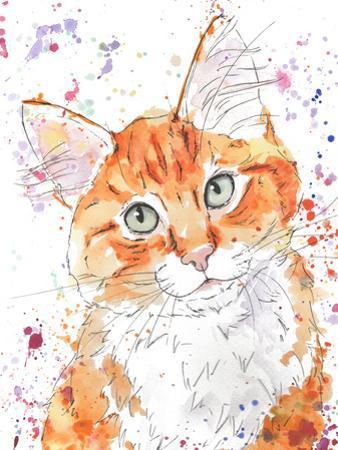 Orange Tabby Kitten by Allison Gray