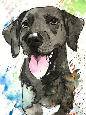 Remmy The Black Lab by Allison Gray