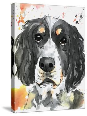 Spaniel Bird Dog by Allison Gray