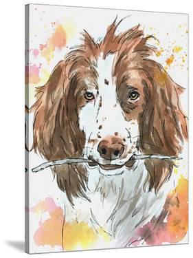 Spaniel Playing Fetch by Allison Gray