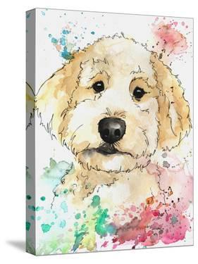 Summer Colors Golden Doodle by Allison Gray
