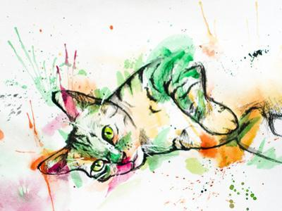 Tabby Cat by Allison Gray