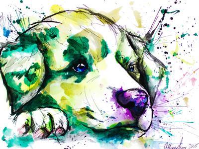 Vivid Aussie Pup by Allison Gray