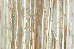 Birch Bark by Allison Pearce