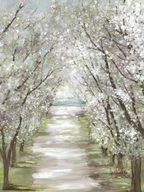 Blossom Pathway by Allison Pearce