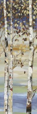 Dark Birch I by Allison Pearce