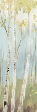 Golden Birch I by Allison Pearce