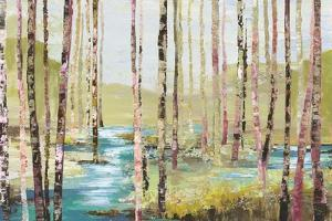 Group of Birch by Allison Pearce