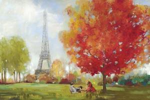 Paris Field by Allison Pearce