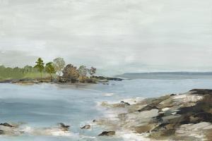 Rocky Beach Views by Allison Pearce