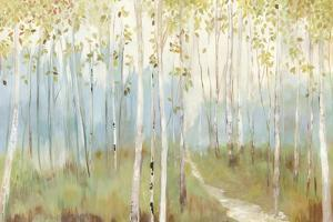 Sunny Forest by Allison Pearce