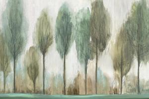 Tall Trees by Allison Pearce