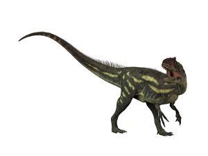 Allosaurus, a Prehistoric Era Dinosaur