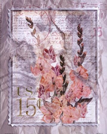 Love Letter Gladioli by Alma Lee