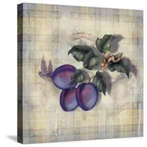Tartan Fruit-Plum by Alma Lee