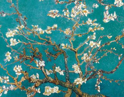 https://imgc.allpostersimages.com/img/posters/almond-blossom_u-L-F7SGRZ0.jpg?p=0