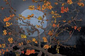 Almond Branches Autumn