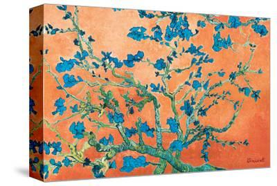 Almond Branches California