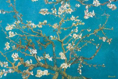 https://imgc.allpostersimages.com/img/posters/almond-branches-in-bloom-san-remy-c-1890_u-L-F2KOHW0.jpg?p=0