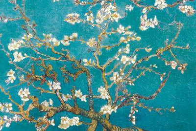 https://imgc.allpostersimages.com/img/posters/almond-branches-in-bloom-san-remy-c-1890_u-L-F5BH7F0.jpg?p=0