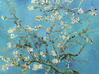 https://imgc.allpostersimages.com/img/posters/almond-branches-in-bloom-san-remy-c-1890_u-L-F5N1LC0.jpg?p=0