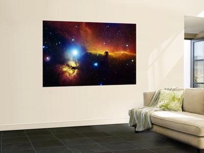 Alnitak Region in Orion (Flame Nebula NGC2024, Horsehead Nebula IC434)