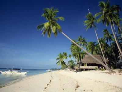 https://imgc.allpostersimages.com/img/posters/alona-beach-on-the-island-of-panglao-off-the-coast-of-bohol-in-the-philippines-southeast-asia_u-L-P7MO5C0.jpg?p=0