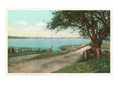 https://imgc.allpostersimages.com/img/posters/along-the-shore-at-new-castle-new-hampshire_u-L-PFBE1I0.jpg?p=0