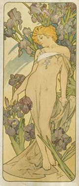"""Iris, (Aus Der Serie Von Dekorationstafeln """"Blumen), 1898 by Alphonse Mucha"""