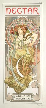 Plate 14 from 'Documents Decoratifs', 1902 by Alphonse Mucha