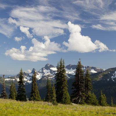 https://imgc.allpostersimages.com/img/posters/alpine-meadow-and-sarvent-glaciers-mount-rainier-national-park-washington-usa_u-L-PHAKLT0.jpg?p=0