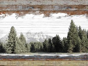 Alpine Range - Teton