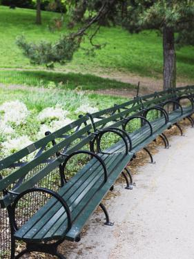 Benches, Central Park, Manhattan by Amanda Hall