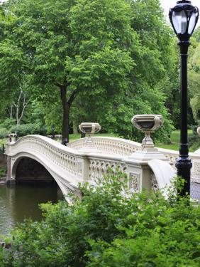 Bow Bridge, Central Park, Manhattan by Amanda Hall