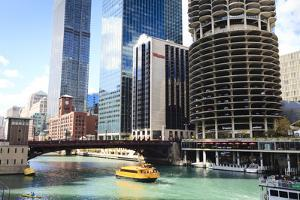 Chicago River and Towers, Chicago, Illinois, United States of America, North America by Amanda Hall