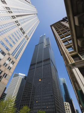 Sears Tower, Chicago, Illinois, United States of America, North America by Amanda Hall