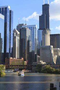 Skyscrapers Including Willis Tower in Downtown Chicago by Chicago River, Chicago, Illinois, USA by Amanda Hall