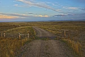 Knowing Which Cattle Guard to Cross by Amanda Lee Smith
